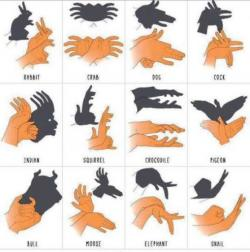 Árnyjáték kézzel