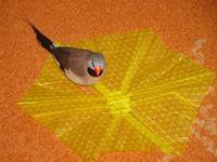 Érdekességek - Az origami ragályos
