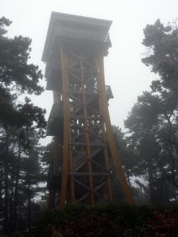 Fából készült szerkezet - Sörházdombi kilátó (Sopron)