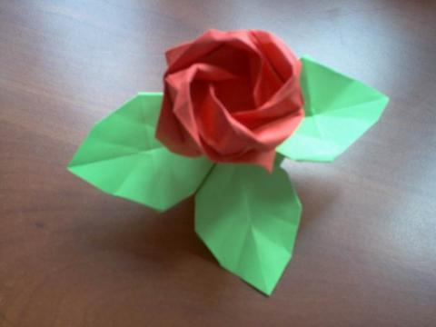 Toshikazu Kawasaki: Rózsa